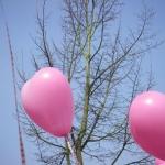 josje-2-ballonnen-25-28a