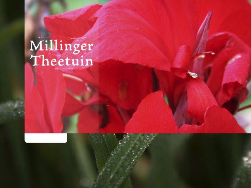 Millinger1